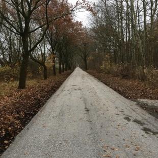 Ländlicher Wegebau